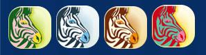 les 4 zebres